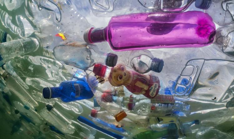 Мікропластик у воді шкодить людям